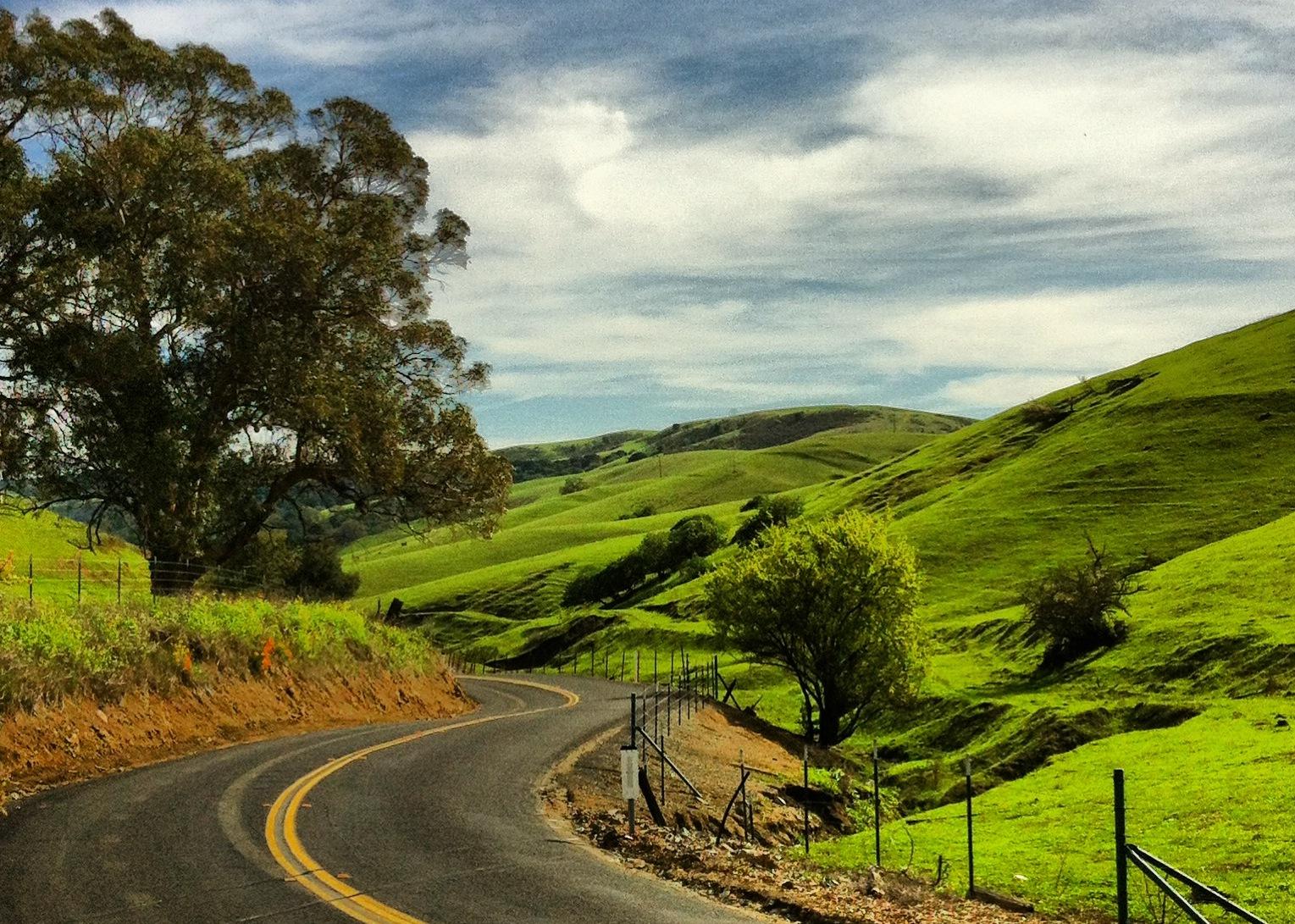 McEwen Road the easy way. (Downhill.)